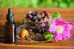 Чашка с сухими ягодами dogrose и бутылки эфирного масла Стоковое фото RF