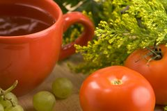 Чашка травяного чая Стоковое Фото