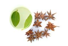 Чашка травяного чая стоковые фотографии rf