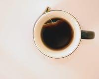 чашка хиа Стоковое Фото