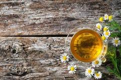 Чашка целебного стоцвета Стоковое Изображение