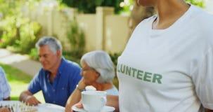 Чашка чаю женщины добровольная держа пока старшии играя шахмат в предпосылке 4k сток-видео