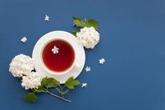 Чашка чаю и белые цветки на голубой предпосылке, взгляд сверху Стоковое фото RF