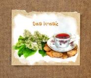 Чашка чаю и белый натюрморт акварели ветви вишни птицы Стоковое Изображение