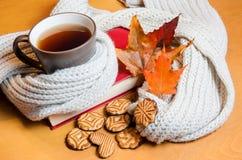 Чашка чаю, книга и печенья Селективный фокус Стоковые Изображения