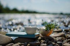 Чашка чаю, кофе, какао в воде на аисте на каменистом d стоковые фото