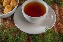 Чашка чаю на теплой предпосылке стоковая фотография rf
