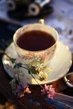 чашка чаю фарфора в свете захода солнца Стоковое Изображение RF