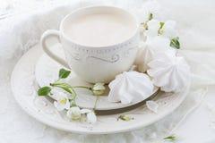 Чашка чаю фарфора с молоком на белой предпосылке стоковые фото