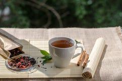 Чашка чая мяты и пук мяты на таблице Стоковое фото RF