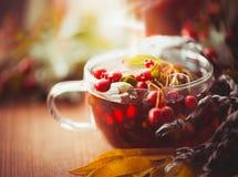 Чашка чая осени с красными ягодами листьев боярышника и падения Стоковое Фото