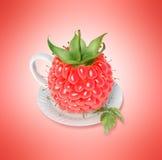 Чашка чая поленики Стоковые Фото