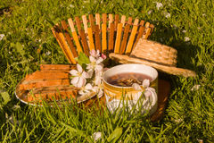 Чашка чая плодоовощей и зацветая цветок яблока на backgrou зеленой травы Стоковое фото RF