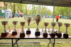 Чашки и вознаграждения на таблице стоковое фото