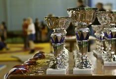 Чашки & медали Стоковая Фотография