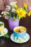Чашки травяного чая с листьями стоцвета и мяты на деревянной предпосылке Стоковые Фото