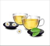 2 чашки чаю с цветками стоцвета и листьями чая i Стоковая Фотография
