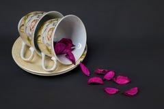 2 чашки Стоковое Изображение