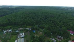 Чаща леса около деревни сток-видео