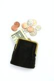 чеканит портмоне дег одного доллара Стоковые Изображения RF