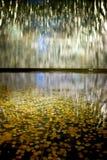 чеканит фонтан много Стоковое Фото