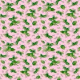 Чеканьте картину специи травы безшовную на розовой предпосылке Стоковые Изображения