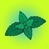Чеканьте лист, ароматичный завод иллюстрация штока