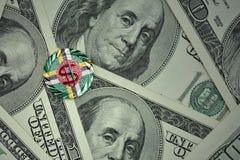 чеканьте с знаком доллара с национальным флагом Доминики на предпосылке банкнот денег доллара Стоковое Изображение