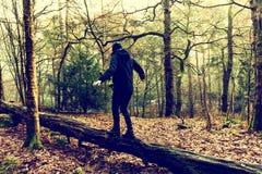 Человек балансирует над стволом дерева на ландшафте осени Стоковое Изображение