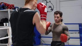 Человек 2 боксеров тренируя совместно на боксерском ринге в клубе боя Бой тренировки человека бойца в перчатках бокса пока sparri акции видеоматериалы