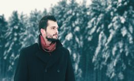 Человек брюнета моды бородатый идя в зимний день, смотрит прочь стоковая фотография