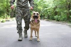 Человек в военной форме с собакой немецкой овчарки стоковая фотография rf