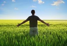 Человек в поле пшеницы Стоковые Изображения RF
