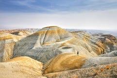Человек в пустыне Стоковое Фото