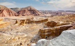 Человек в пустыне стоковые фотографии rf
