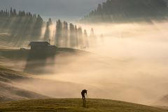 Человек в тумане стоковое изображение rf