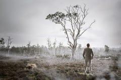 Человек в туманном мультимедиа леса Стоковые Фотографии RF