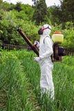 Человек в химикатах полной защитной одежды распыляя стоковое фото rf