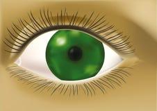 человек глаза иллюстрация штока