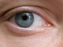 человек глаза Стоковые Изображения RF