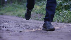 Человек детенышей подходящий бежать в древесинах Молодой спортсмен бежать в древесинах Стоковое Изображение RF