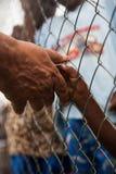 Человек для того чтобы дать руку ребенку нужному в Африке стоковые фото