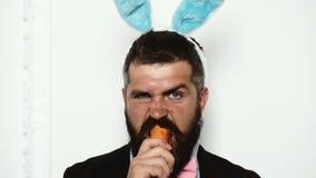 Человек зайчика ест морковь изолированную на белизне E Конец-вверх бородатого человека с ушами и морковью зайчика внутри сток-видео
