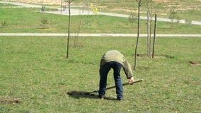 Человек засаживая дерево в городе акции видеоматериалы