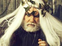 Человек Зевса бородатый стоковое изображение rf