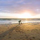 Человек и его собака играя на пляже стоковые изображения