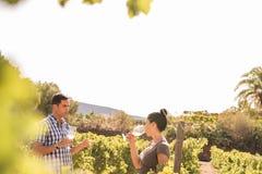 Человек и женщина имея болтовню в виноградниках Стоковое Изображение RF