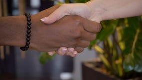 Человек и женщина приветствуют и трясущ руки в компании сток-видео