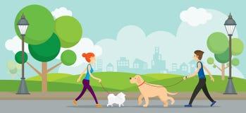 Человек и женщина с собаками в парке Стоковые Изображения