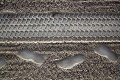 Человек и покрышки следа ноги песка пляжа Стоковое фото RF